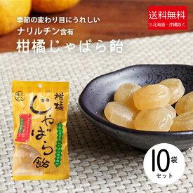 【ふるさと納税】柑橘じゃばら飴10袋セット ※離島への発送不可(北海道、沖縄本島は配送可能)