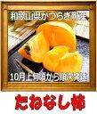 【ふるさと納税】たねなし柿秀品7.5kg(28〜36玉)箱1個