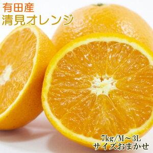 【ふるさと納税】[厳選]有田産清見オレンジ約7kg(サイズおまかせ・秀品)