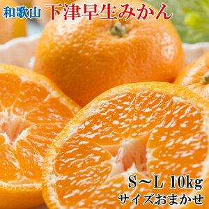 K1-18【ふるさと納税】【産直】下津早生みかん約10kg(S〜Lサイズおまかせ)