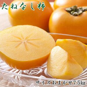 K1-39【ふるさと納税】【秋の味覚】和歌山産の平たねなし柿約7.5kg(M・Lサイズおまかせ)