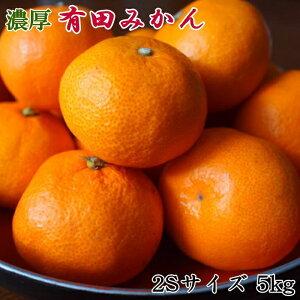【ふるさと納税】【濃厚】紀州有田みかん約5kg(2Sサイズ・赤秀品)