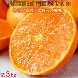 【ふるさと納税】とろける食感!ジューシー柑橘 せとか 約 3kg 2021年2月上旬頃〜2月下旬頃発送予定