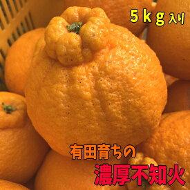 【ふるさと納税】有田育ちの濃厚不知火(通称デコポン)(ご家庭用)約5kg