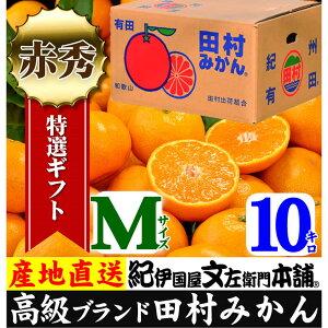 【ふるさと納税】田村みかん/特選ギフト品10kg【Mサ...