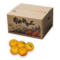 【ふるさと納税】有田みかん(温州) 10kg