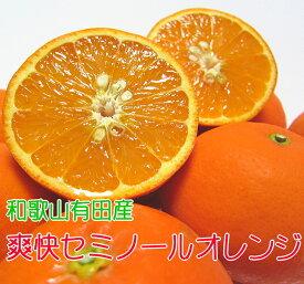 【ふるさと納税】有田育ちの爽快セミノールオレンジ 3kg※2021年4月上旬〜4月下旬頃お届け予定