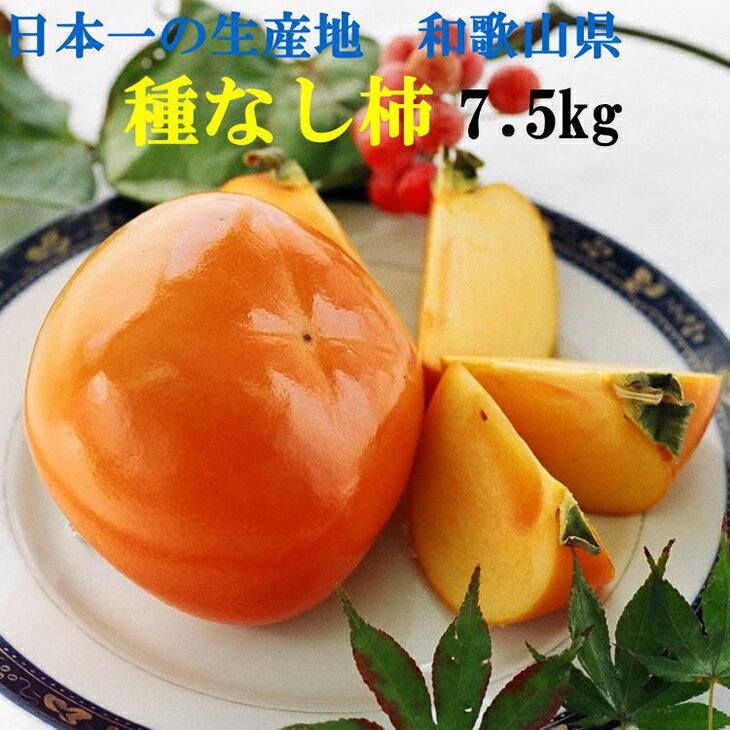 【ふるさと納税】[甘味たっぷり]和歌山産たねなし柿(M・Lサイズおまかせ)約7.5kg・赤秀品※2019年9月下旬頃〜2019年10月下旬頃に順次発送予定