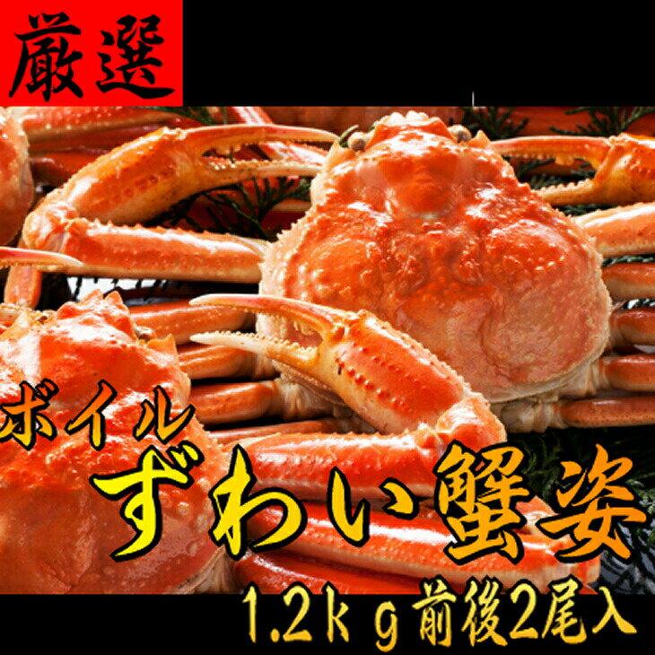 【ふるさと納税】こだわりのボイルずわい蟹/姿1.2kg仕立て[600g×2尾]