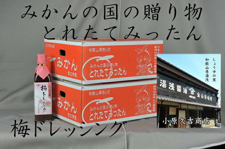 【ふるさと納税】有田のみかん6kgと梅ドレッシング300ミリ1本※北海道・沖縄および離島への発送不可、お届け日指定不可