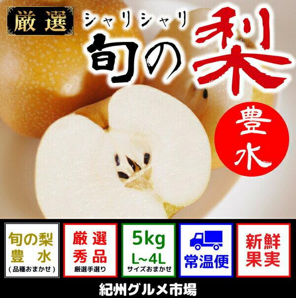 【ふるさと納税】シャリシャリ食感 旬の梨 豊水 5Kg(L〜4L) 紀州グルメ市場※8月中旬頃〜10月中旬頃に順次発送予定