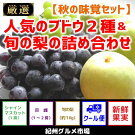 【秋の味覚セット】人気のブドウ2種&旬の梨の詰め合わせ紀州グルメ市場