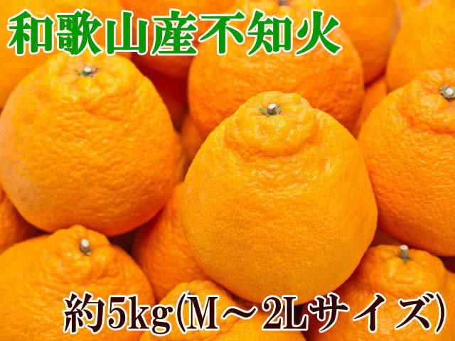 【ふるさと納税】【春柑橘の代表格】和歌山の不知火(デコポン)約5kg(M〜2Lサイズおまかせ)※お届け日指定不可※2020年2月上旬〜3月中旬頃に順次発送予定