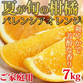【ふるさと納税】【ご家庭用】希少な国産バレンシアオレンジ 7kg※2020年6月下旬〜7月中旬発送の商品になります