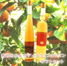【ふるさと納税】有田みかんのアイスワインと有田みかんワイン2本セット