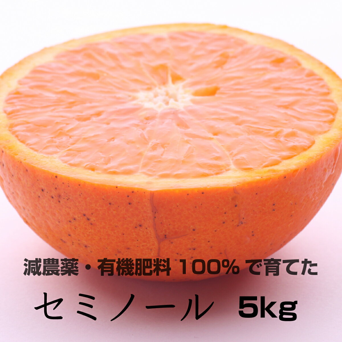 【ふるさと納税】特別栽培 セミノールオレンジ5kg 【発送時期指定可】【有機肥料100%・減農薬栽培の春みかんを農家直送】