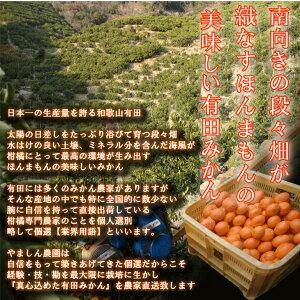 【ふるさと納税】【7kg×2箱】こだわりの有田みかん合計14kg【発送時期指定OK】旬のみかん農家直送《有機質肥料100%》