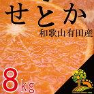 【ふるさと納税】《数量限定》柑橘の王様せとか8kg【3月上旬より順次発送】