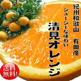 【ふるさと納税】春柑橘清見オレンジ10kg【3月上旬より順次発送】