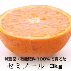 【ふるさと納税】特別栽培 セミノールオレンジ3kg  【発送時期指定可】【有機肥料100%・減農薬栽培の春みかんを農家直送】