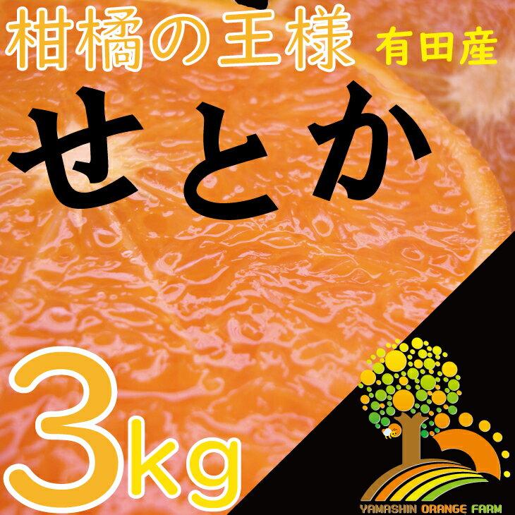 【ふるさと納税】《数量限定》柑橘の王様せとか3kg【3月上旬より順次発送】