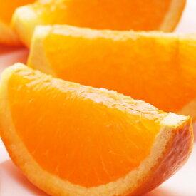 【ふるさと納税】<3月発送>樹上完熟清見オレンジ4kg