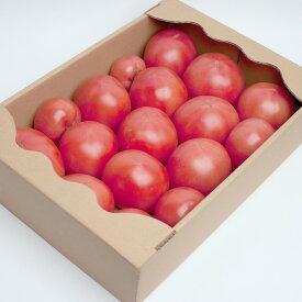 【ふるさと納税】<発送時期指定OK>ご家庭用完熟トマト3kg