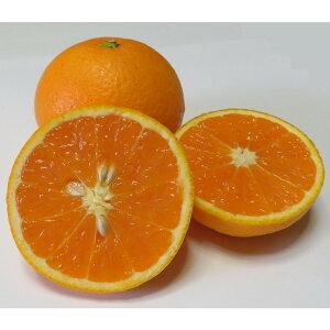 【ふるさと納税】久幸園 完熟清見オレンジ 3kg