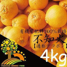 【ふるさと納税】春柑橘こだわりの不知火(通称デコポン)和歌山産家庭用4kg