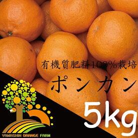 【ふるさと納税】春柑橘こだわりのポンカン和歌山産 5kg
