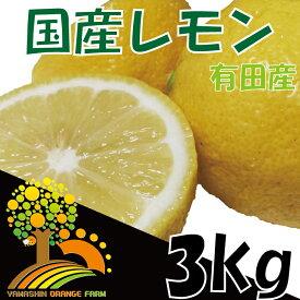 【ふるさと納税】安心安全の国産レモン 省農薬栽培 約3kg
