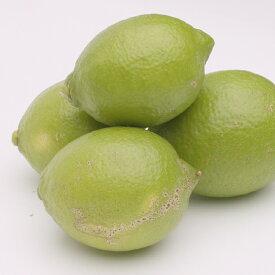 【ふるさと納税】<発送時期指定OK>家庭用レモン3kg