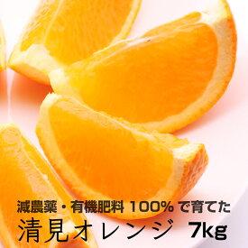 【ふるさと納税】特別栽培清見オレンジ7kg 【有機肥料100%・減農薬栽培で育てました】【きよみオレンジ】