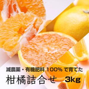 【ふるさと納税】特別栽培 柑橘詰合せ3kg 【発送時期指定可】【有機肥料100%・減農薬栽培の旬の柑橘3種類以上を農家直送】