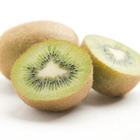【ふるさと納税】<2月発送>キウイフルーツ2.5kg
