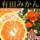 【ふるさと納税】完熟有田みかん10kg