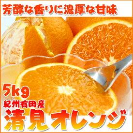 【ふるさと納税】とにかくジューシー清見オレンジ 5kg