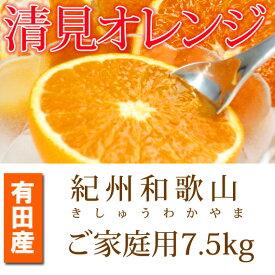 【ふるさと納税】【ご家庭用訳アリ】紀州有田産清見オレンジ 7.5kg