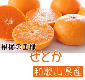 【ふるさと納税】【2021年3月よりお届け】柑橘の王様 和歌山有田の濃厚せとか