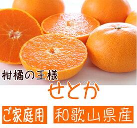 【ふるさと納税】柑橘の王様 和歌山有田の濃厚せとか(ご家庭用)
