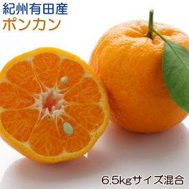 【ふるさと納税】【春みかん】紀州有田産ポンカン6.5kg (サイズ混合)
