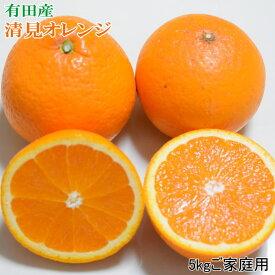 【ふるさと納税】[濃厚]有田産清見オレンジ5kg(M〜3Lサイズおまかせ)ご家庭用