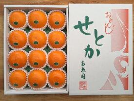 【ふるさと納税】【化粧箱】『柑橘の大トロ』 ハウスせとか 厳選 12玉入 ※2021年2月上旬〜4月上旬頃に順次発送予定
