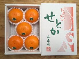 【ふるさと納税】【ハーフ化粧箱】『柑橘の大トロ』 ハウスせとか 厳選 5玉入 ※2021年2月上旬〜4月上旬頃に順次発送予定