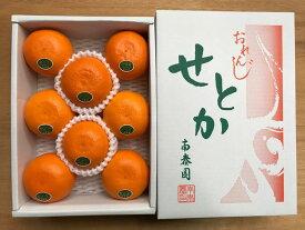 【ふるさと納税】【ハーフ化粧箱】『柑橘の大トロ』ハウスせとか厳選8玉入 ※2021年2月上旬〜4月上旬頃に順次発送予定