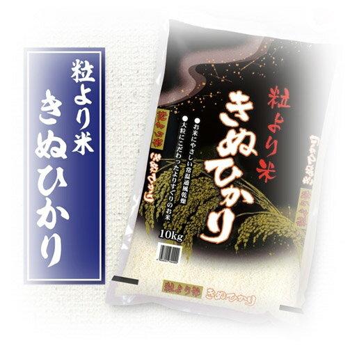 【ふるさと納税】和歌山県日高郡産 粒より米きぬひかり 10kg