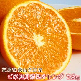 【ふるさと納税】【ご家庭用訳アリ】紀州有田産清見オレンジ 7.5kg※2021年3月下旬頃〜4月下旬頃に順次発送予定
