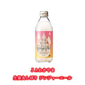 【ふるさと納税】JAわかやま 生姜丸しぼり Wakayama Ginger Ale 和歌山ジンジャーエール 250ml×24本