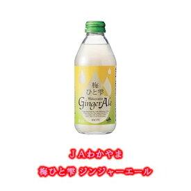 【ふるさと納税】JAわかやま 梅ひと雫 Wakayama Ginger Ale 和歌山ジンジャーエール 250ml ×24本