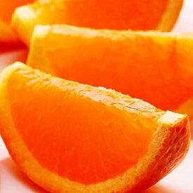 【ふるさと納税】<3月より発送>樹上完熟清見オレンジ約3kg+90g(傷み補償分)【北海道・沖縄配送不可】